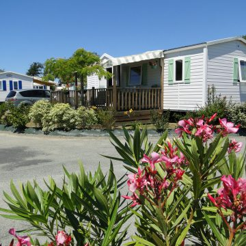 Camping Loyada Talmont-Saint-Hilaire Mobil-home Vacances