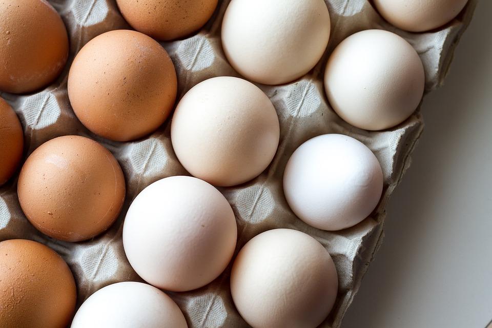 Cuisine œuf blanc