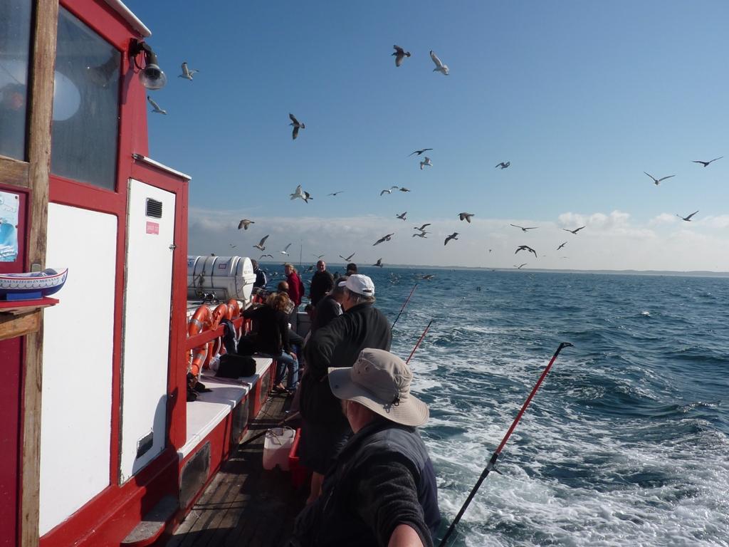 Sortie en mer avec la Messaline - Crédit Photo : ©La Messaline