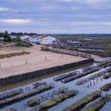 Le port ostréicole de la Guittière - ©Horizon Vertical