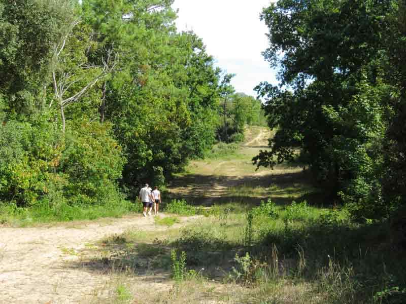 Des balades à pied - Destination Vendée Grand Littoral