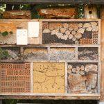 Maison à insecte - biodiversité - Crédit Photo : ©Pixabay