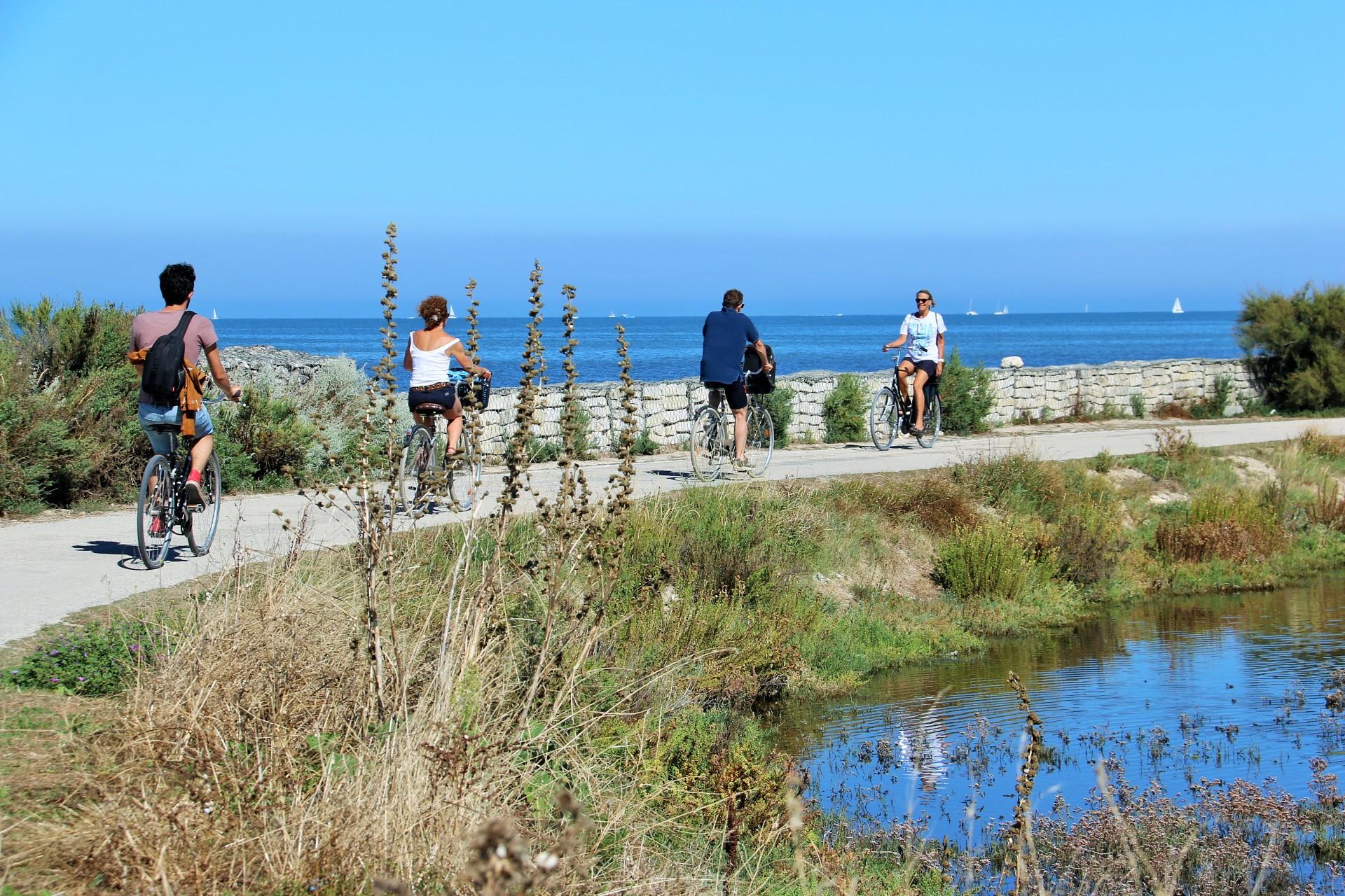 Île de Ré à vélo - Crédit Photo : ©Parenthèse Voyage