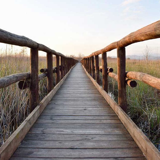 Eco-gestes : respecter les sentiers balisés