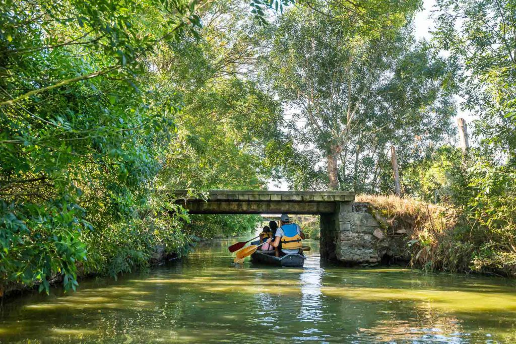 Balade en barque à la Maison du Marais à Longeville-sur-Mer - crédit : Julien Gazeau
