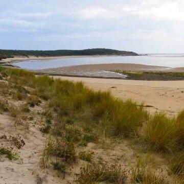 Géocaching : estuaire du Payré