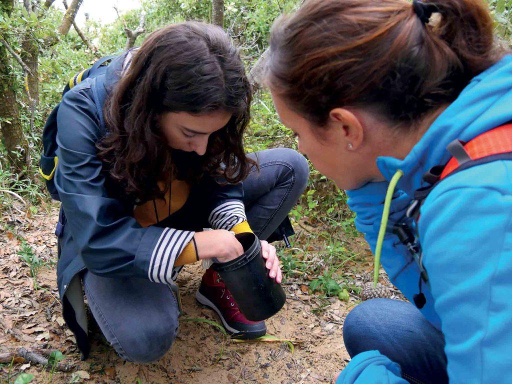 Geocaching : découverte d'une cache sur le parcours du Payré