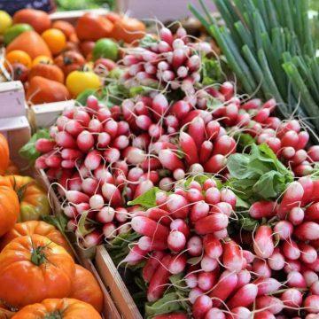 Marché radis produits locaux