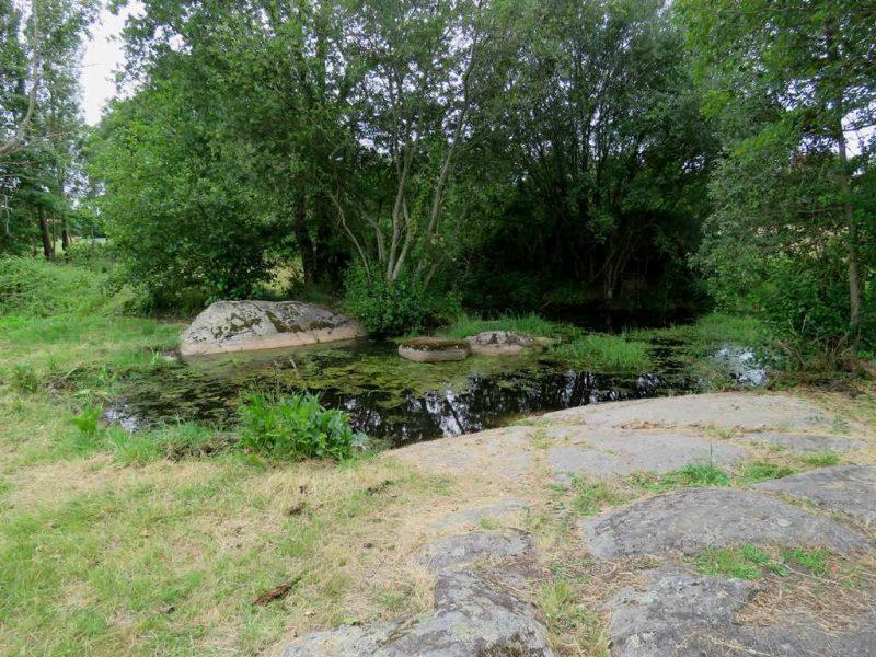 Fontaine Saint Gré à Avrillé
