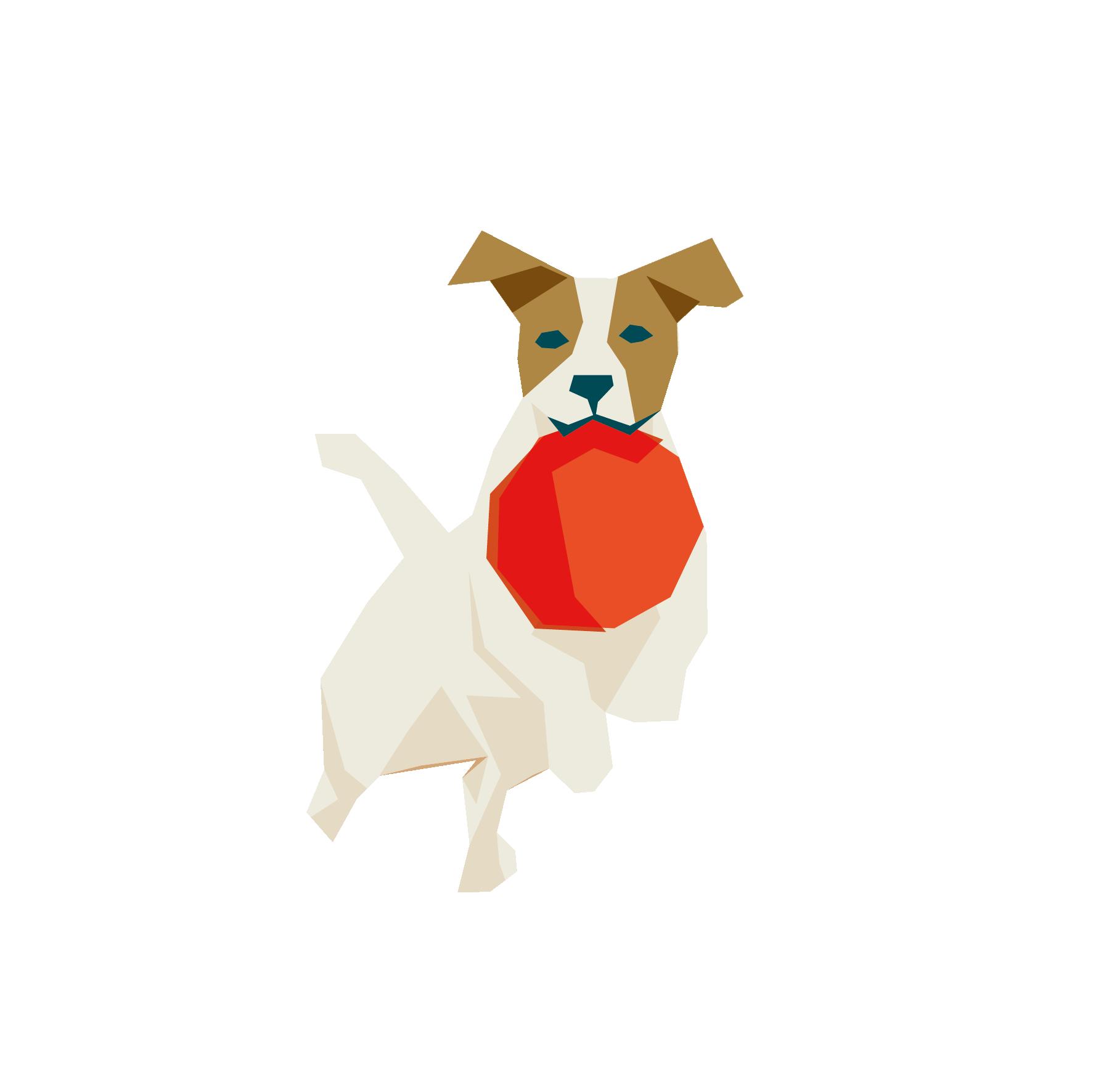 Pépites de l'équipe - Alizée la dog friendly
